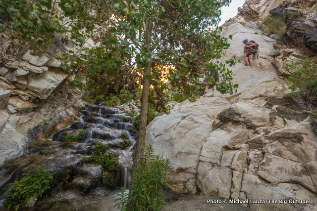 Katie Hughes scrambling up a cliff beside a waterfall in Surprise Canyon, Death Valley National Park.
