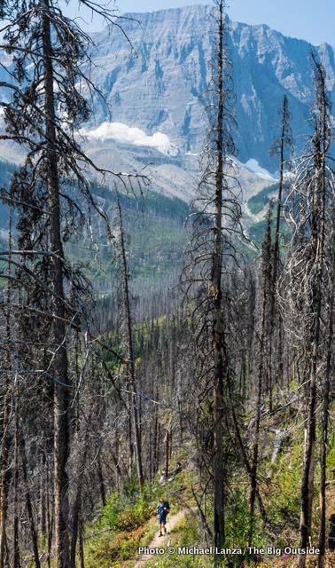 Floe Lake Trail.