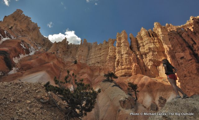 Hiking below the Wall of Windows, Peek-a-Boo Loop, Bryce Canyon National Park.