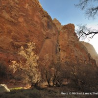 Spring Canyon campsite, Capitol Reef National Park.