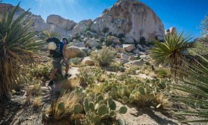 Photo Gallery: California's National Parks