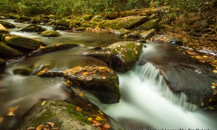 3-Minute Read: Backpacking in Great Smoky Mountains National Park