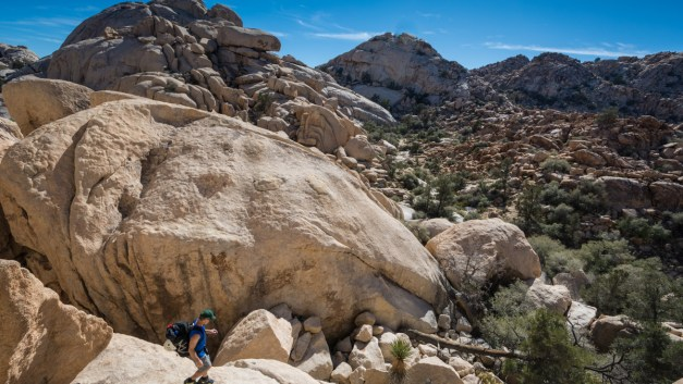 Photo Gallery: Exploring Joshua Tree National Park