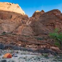 Campsite near Shower Spring, Paria Canyon.