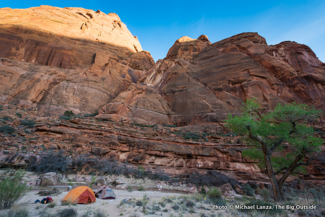 Campsite near Shower Spring, Paria Canyon.