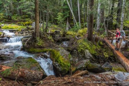 Fisher Creek Trail, North Cascades.
