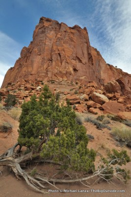 Chimney Rock Canyon, Capitol Reef National Park.