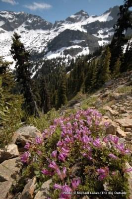 Heather Pass-Maple Pass Loop, North Cascades National Park.