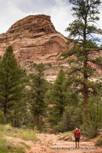 Woodenshoe Canyon, Utah.