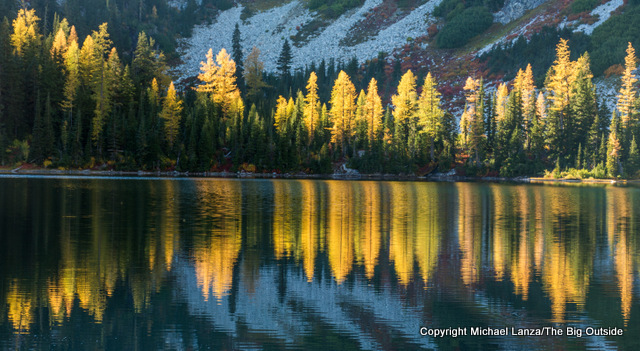 Larch trees reflected in Rainbow Lake, North Cascades National Park Complex.