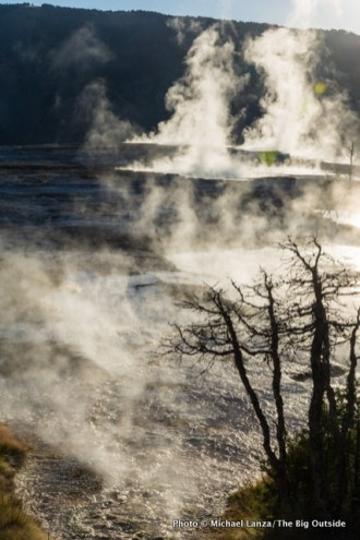 Mammoth Hot Springs at dawn, Yellowstone National Park.