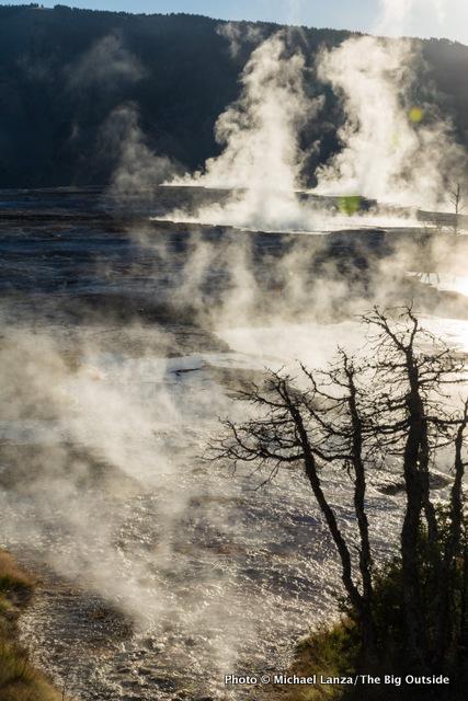 Mammoth Hot Springs at dawn, Yellowstone National Park.