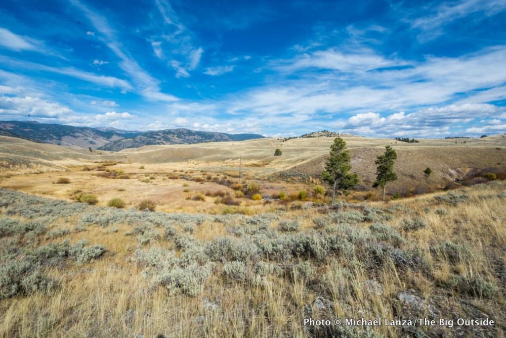 Blacktail Deer Creek Trail, Yellowstone National Park.