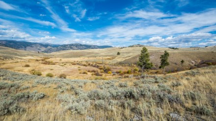 Ask Me: The Best Multi-Day Wilderness Trips in Yellowstone