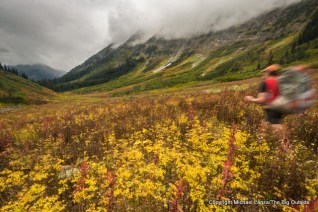 Todd Arndt, Fisher Creek Trail, North Cascades N.P.