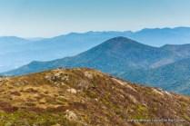 Art Loeb Trail, Tennent Mountain, Pisgah National Forest.