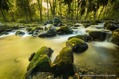 Forney Creek, Great Smoky Mountains National Park, N.C.