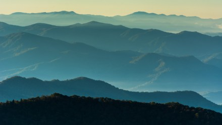In the Garden of Eden: Backpacking the Great Smoky Mountains
