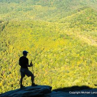 Looking Glass Rock, Pisgah National Forest, N.C.