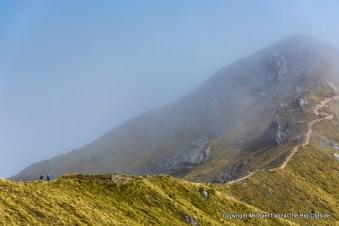 The Kepler Track, Fiordland National Park.