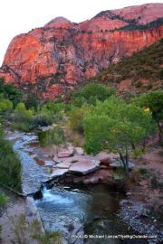 La Verkin Creek, in the Kolob Canyons of Zion National Park.