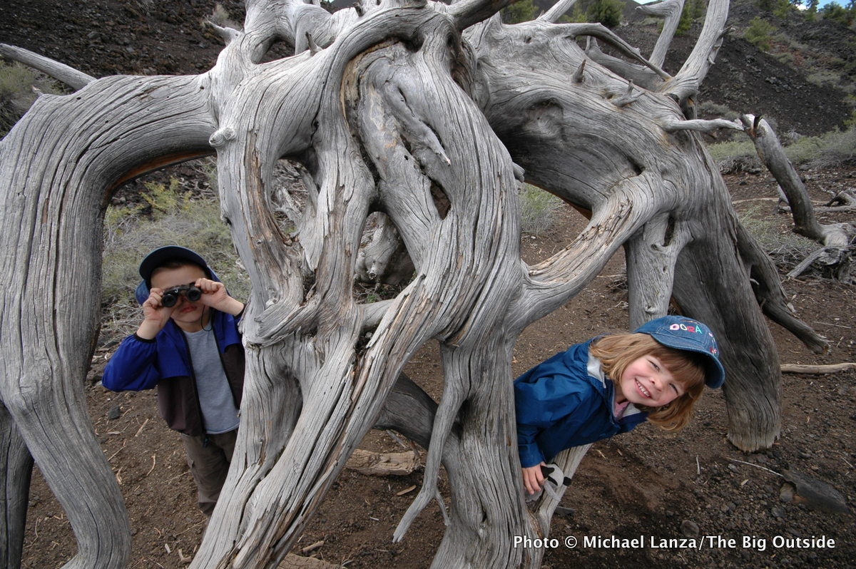 Young kids in twisted tree root at Idaho's Craters of the Moon National Monument.