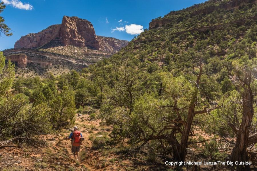 David Gordon backpacking up Utah's Dark Canyon.