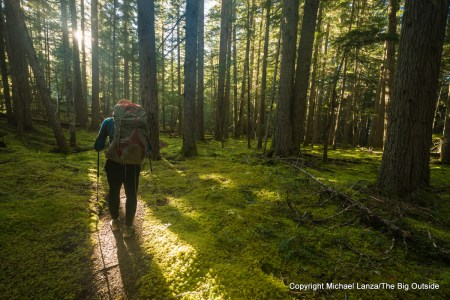 A backpacker on the Thunder Creek Trail, North Cascades National Park.