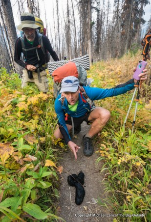 Backpackers and bear scat on the trail in Glacier National Park.