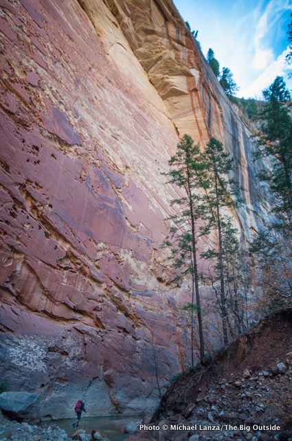 The upper Narrows in Zion National Park.