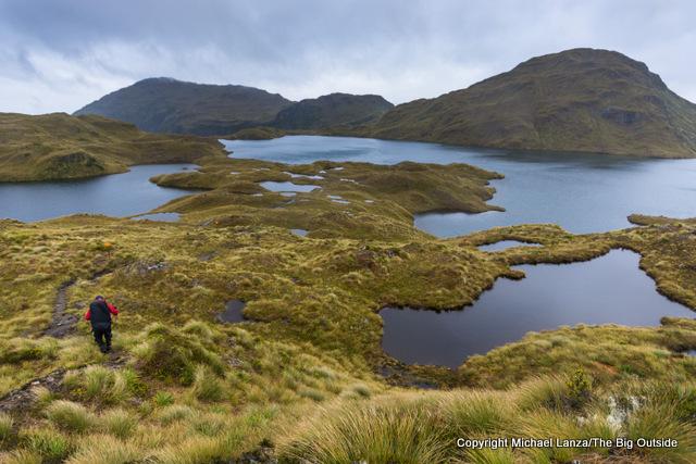 A hiker trekking the Dusky Trail in the Pleasant Range, Fiordland National Park, New Zealand.