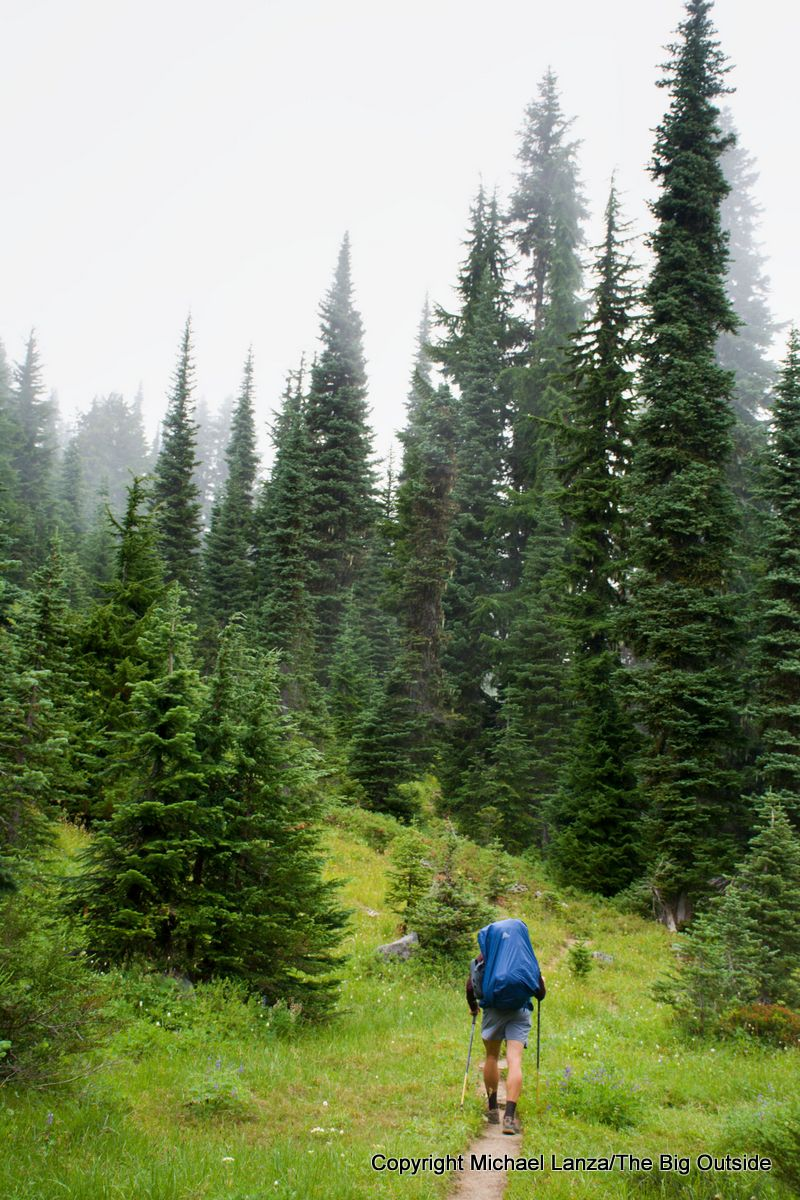 A backpacker on the Wonderland Trail south of Indian Bar, Mount Rainier National Park.