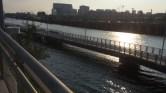 Future Boardwalk over the Schuylkill