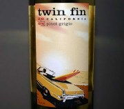 Twin Fin
