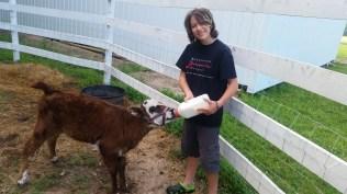 Chessie the farm girl.