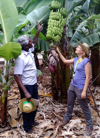 Biobest Banana