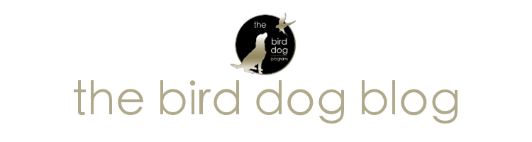 The Blog for The Bird Dog Program in Short Sales and Real Estate Investing with Kristine Zelazo the Short Sale Gal