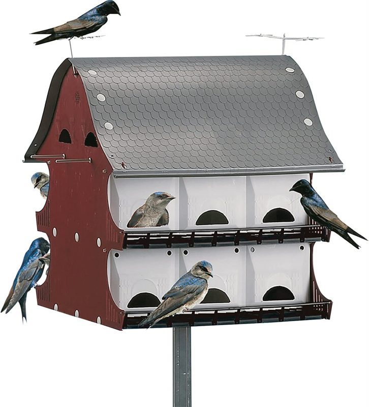 best bird houses
