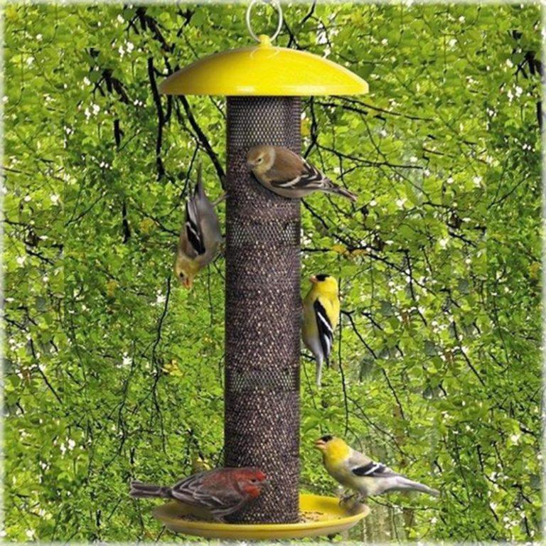 No/No Yellow YSSF00346Straight Sided Finch Feeder