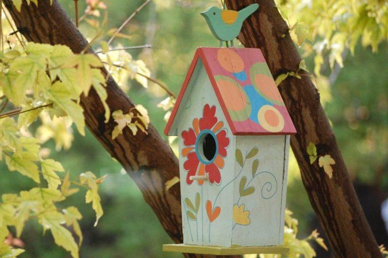 Types of Bird Houses