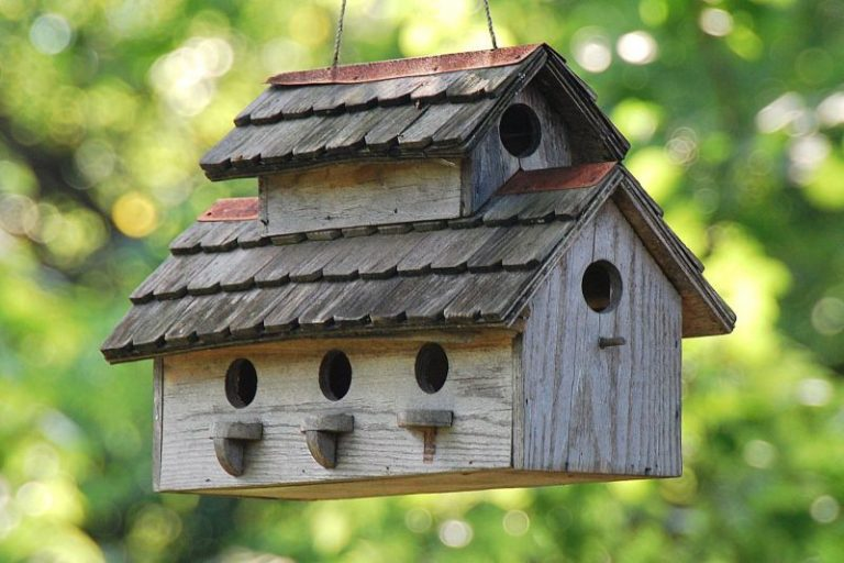Who Should Buy a Bird House