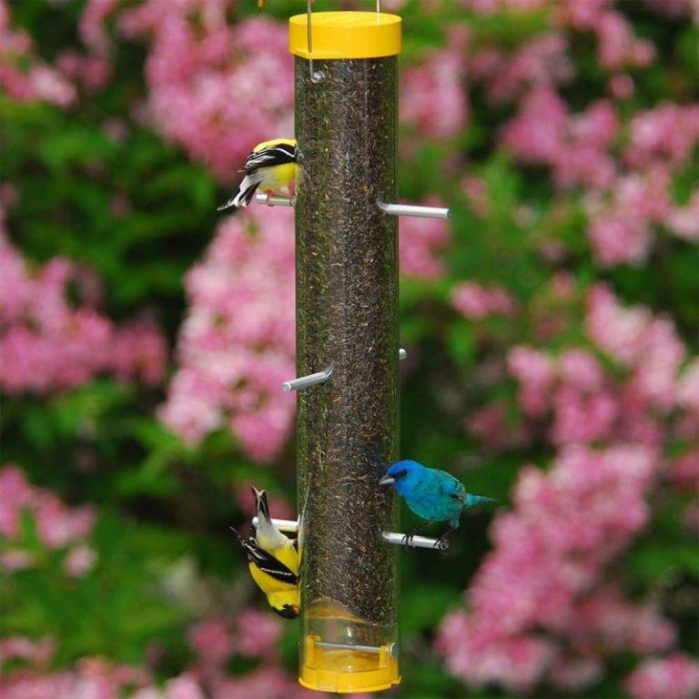 Woodlink NATUBE20NB Audubon Nyjer Thistle Finch Feeder