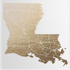 Louisiana Map by GeekInk Design