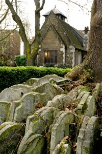 Photo of gravestones clustered around a tree in front of a church