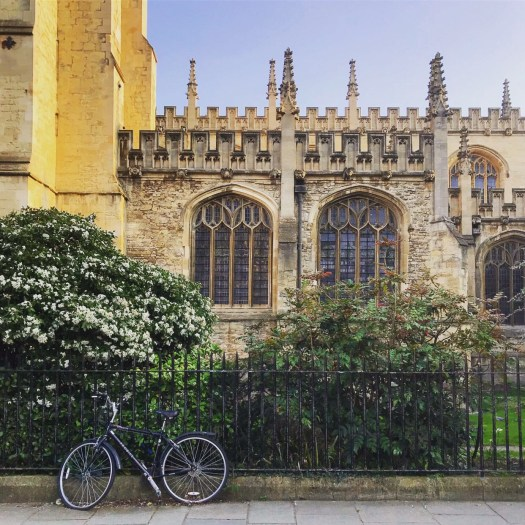 Photo of a bicycle parked in front of a hedge beside an old stone building