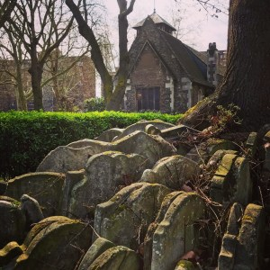 Photo of grave stones clustered around a tree trunk in a church yard