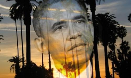 ObamaPalmTree