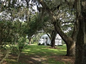 condtions for a southern gothic