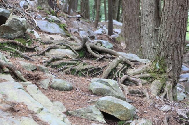 White Rock National Park, VT