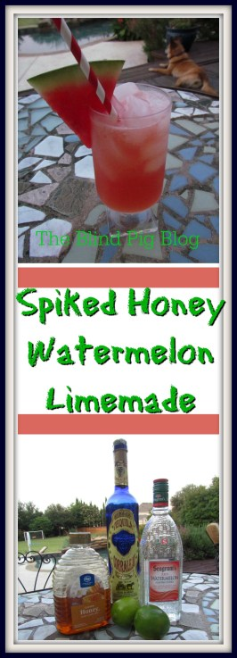 spiked honey watermelon limemade